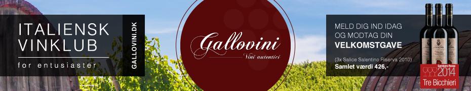 Gallovini-930x180