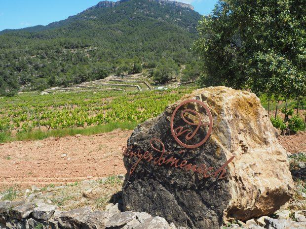Mageløse, maleriske og magiske Montsant