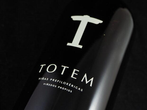 Totaloplevelse fra Totem